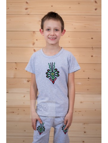 Koszulka szara parzenica